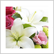 Interflora.co.uk : Book Your Flowers Now !
