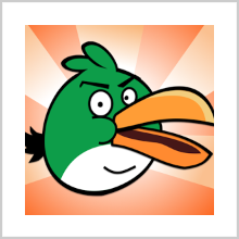 HUNGRY BIRD – FEED IT, BUT SAFELY!