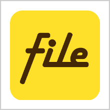 "FILE EXPERT – A MANAGER OF ""YOUR"" CHOICE"