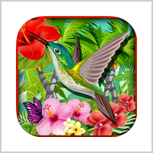 IRIE ISLANDS DEFENCE – A BEAUTIFUL CROWN OF THORNS