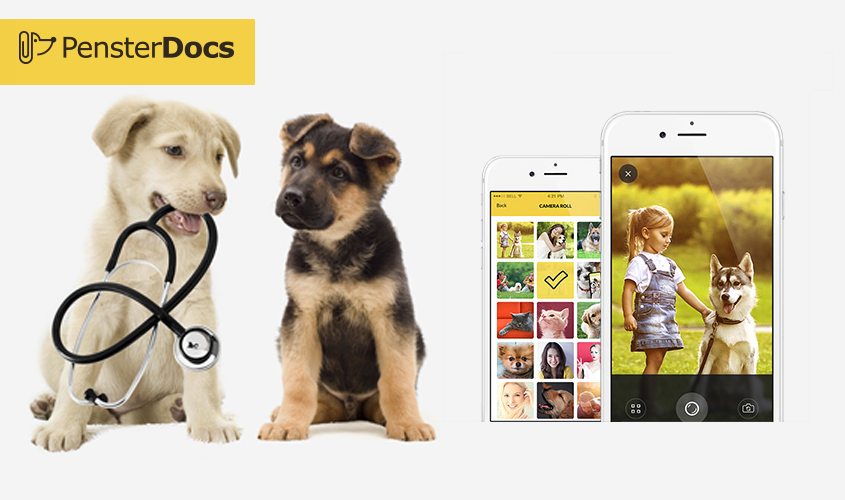 PensterDocs: App for Pet Owners