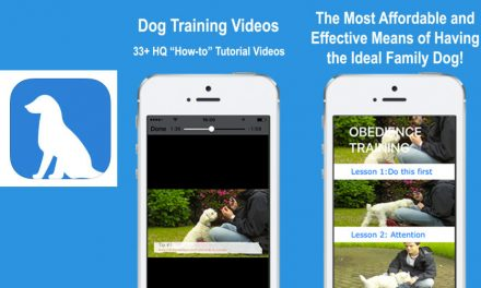 DogTraining App; An Ideal App For Training A Dog Using Video Tutorials