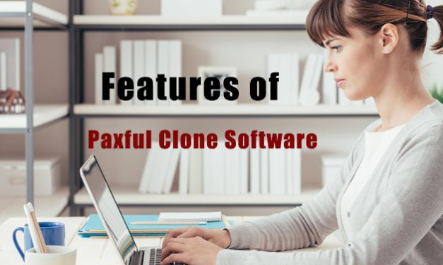 Special features of a paxful clone software
